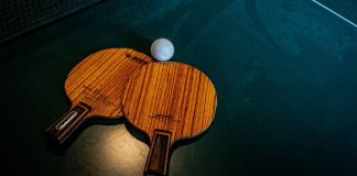 best ping pong paddle for spin
