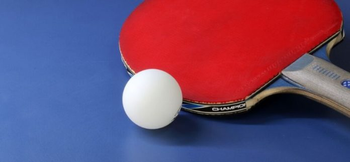 best ping pong paddle under 50