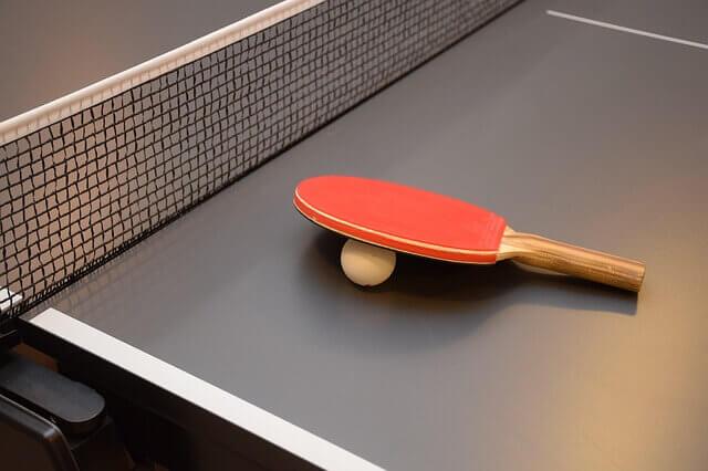 best ping pong net